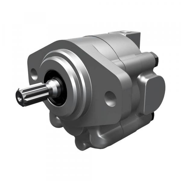 Japan Yuken hydraulic pump A16-F-R-04-B-S-K-32 #1 image